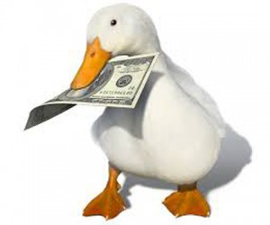 You Bought A 'Duck' – Now What?